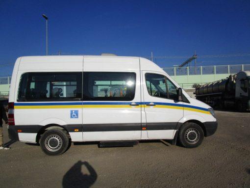 furgone usato disabili